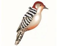 Red Bellied Woodpecker Ornament COBANEC391