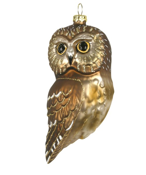 Northern Saw Whet Owl Ornament COBANED395'