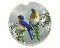Beautiful Songbirds Bluebirds Car Coaster-CART09870
