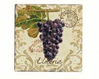 Vista Grapes Tumbled Tile Coasters Set of 4-CART10393