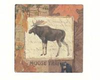 Moose Tracks Tumbled Tile Coasters Set of 4-CART10417