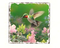 Hummingbird Number 1 Single Tumbled Tile Coaster-CART11099
