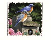 Bluebirds Number 2 Single Tumbled Tile Coaster-CART11179