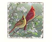 Cardinals Number 1 Single Tumbled Tile Coaster-CART11182