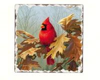 Cardinals Number 2 Single Tumbled Tile Coaster-CART11183