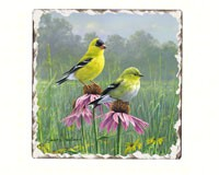 Goldfinches Number 2 Single Tumbled Tile Coaster-CART11196