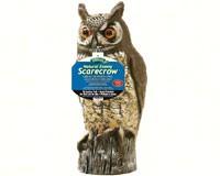 Plastic Owl-DALENOW6