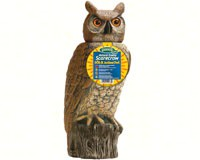 Solar Activate 18 inch Owl-DALENSROH4