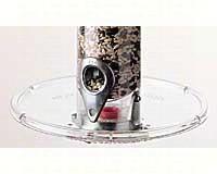 Seed Tray 7 1/2 inch (A-6s, THs, XLs, Mini)-DYA6T