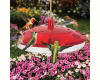New Large Hummingbird Feeder-DYH82