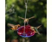 Ruby Sipper Hummingbird Feeder Lavender-DYRS3HL