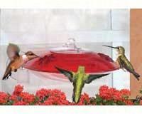 Window Hummingbird Feeder-DYWH3