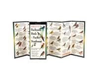 Sibley's Backyard Birds of the Pacific Northwest-LEWERSBBP119