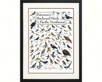 Peterson's Backyard Birds of Pacific NW Poster-LEWERSBBPPT129