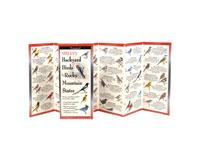 Sibley's Backyard Birds of Rocky Mountain States-LEWERSBBR123