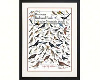 Peterson's Backyard Birds of the Rocky Mountains Poster-LEWERSBBRPT133