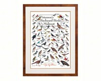 Peterson's Backyard Birds of the Midwest Poster-LEWERSBBUPT006