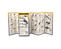 Birds of the Northern & West. Gulf Coast-LEWERSBNW107