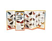 Butterflies of Mid-Atlantic-LEWERSBUM102