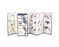 Birds of Florida's Gulf Coast-LEWERSGB112