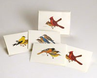 Peterson Bird Notecard Assortment (2 each of 4 styles)-LEWERSNC11