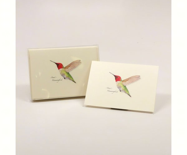 Anna's Hummingbird Notecards