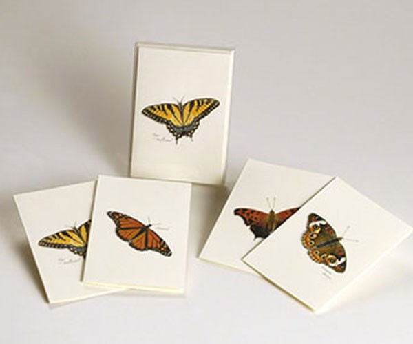 Butterfly Notecard Assortment (2 each of 4 styles)