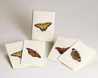 Butterfly Notecard Assortment (2 each of 4 styles)-LEWERSNC14