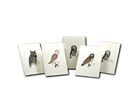 Sibley Owl Assortment-LEWERSNC158