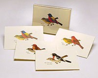 Peterson Bird Notecard Assortment II (2 each of 4 styles)-LEWERSNC17