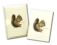 Gray Squirrel Boxed Notecards-LEWERSNC183