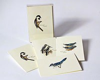 Peterson Bird Notecard Assortment III (2 each of 4 styles)-LEWERSNC22