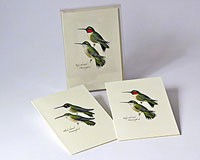 Peterson's Hummingbird Notecard Assortment (4 each of 2 styles)-LEWERSNC23