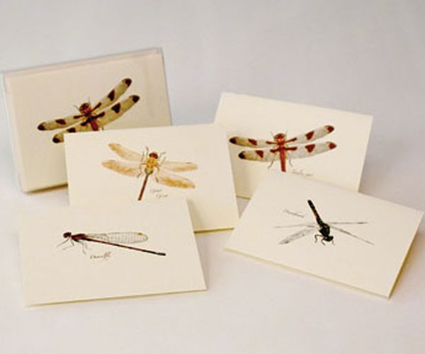 Dragonfly Notecard Assortment (2 each of 4 styles)