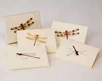 Dragonfly Notecard Assortment (2 each of 4 styles)-LEWERSNC25