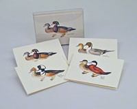 Duck Notecard Assortment (4 each of 2 styles)-LEWERSNC31