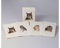Peterson's Owls Notecard Assortment (2 each of 4 styles)-LEWERSNC41