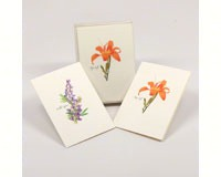 Wildflower Assortment Notecards (2 each of 4 styles)-LEWERSNC42