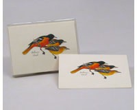 Baltimore Oriole Notecard Assortment (8 of 1 style)-LEWERSNC52