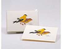 American Goldfinch Notecard Assortment (8 each of 1 style)-LEWERSNC64