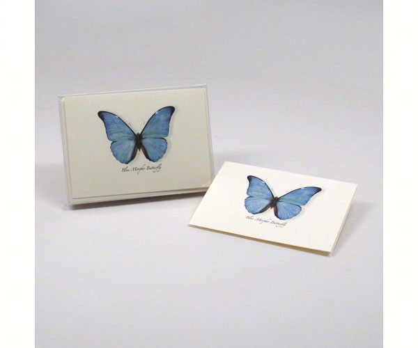 Blue Morpho Butterfly Notecards