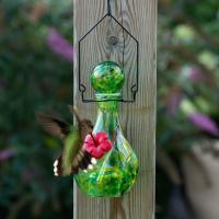LunaLite Vase Hummingbird Feeder - Jupiter-EV3501G
