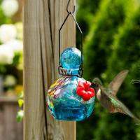 LunaLite  Globe Hummingbird Feeder - Blue-EV3502B