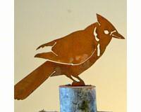 Blue Jay Bird Silhouette-ELEGANTB720