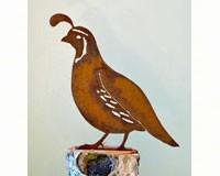 CA Quail Male Bird Silhouette-ELEGANTB725