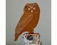 Owl Bird Silhouette-ELEGANTB726