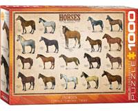 Horses 1000 pcs-EURO60000078