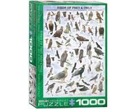 Birds of Prey & Owls 1000 pcs-EURO60000316