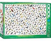 Sibley's World of Birds 1000 pcs-EURO60000821