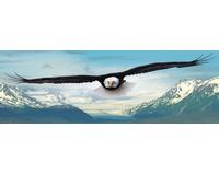 Eagle Puzzle 1000 pcs-EURO60100302